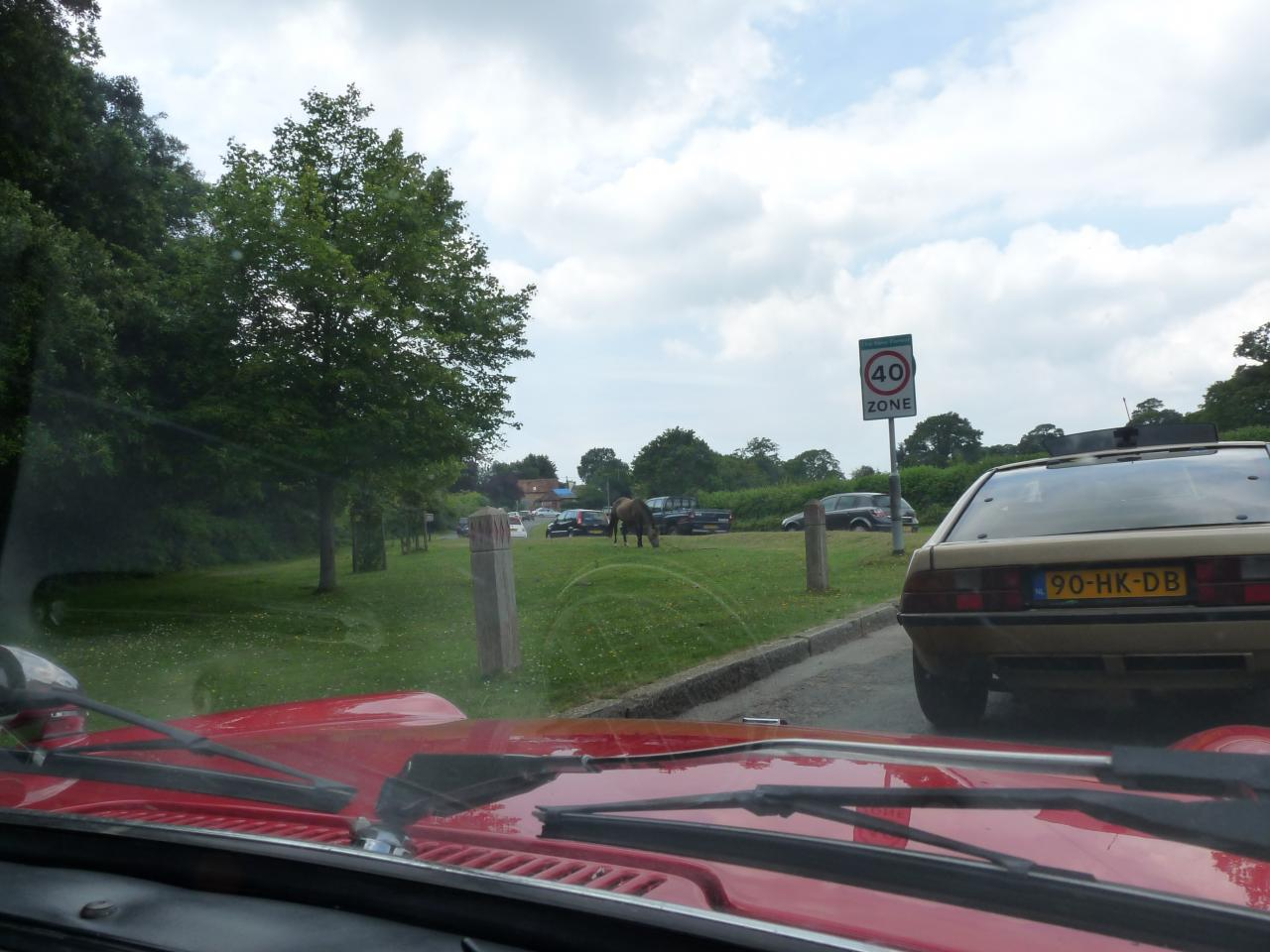 Rally in the New Forest